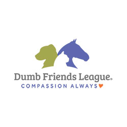 Dumb-Friends-LeagueV2
